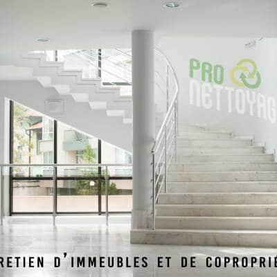 nettoyage-coproprietes-nancy